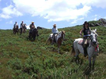 Ел Камино, френският път на кон
