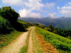 Камино де Сантяго - природа